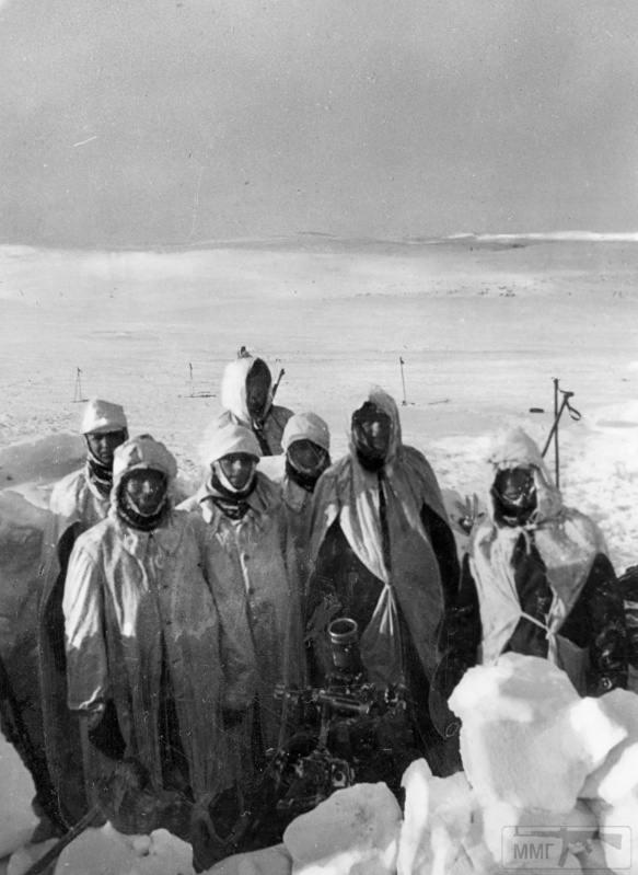 15937 - Военное фото 1941-1945 г.г. Восточный фронт.