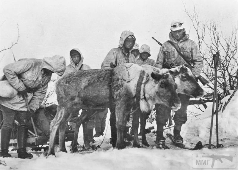 15939 - Военное фото 1941-1945 г.г. Восточный фронт.