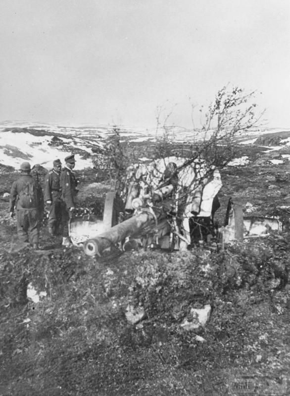 15945 - Военное фото 1941-1945 г.г. Восточный фронт.