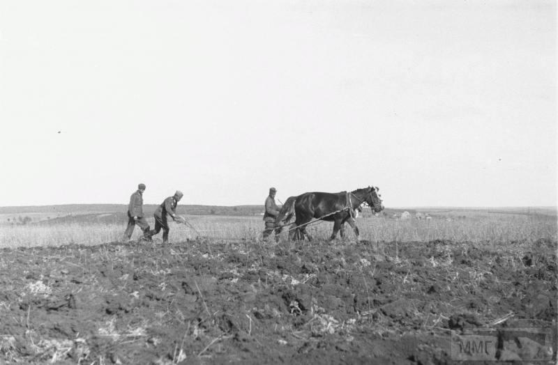 15994 - Военное фото 1941-1945 г.г. Восточный фронт.