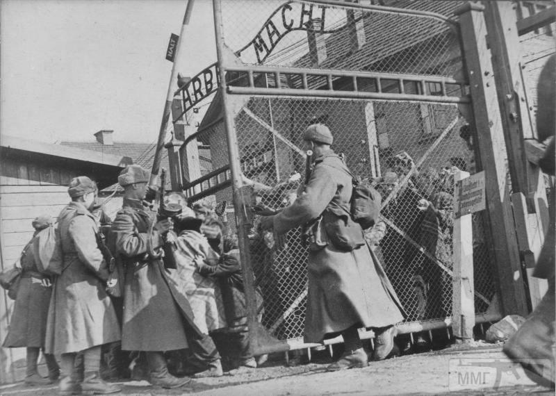 15999 - Военное фото 1941-1945 г.г. Восточный фронт.