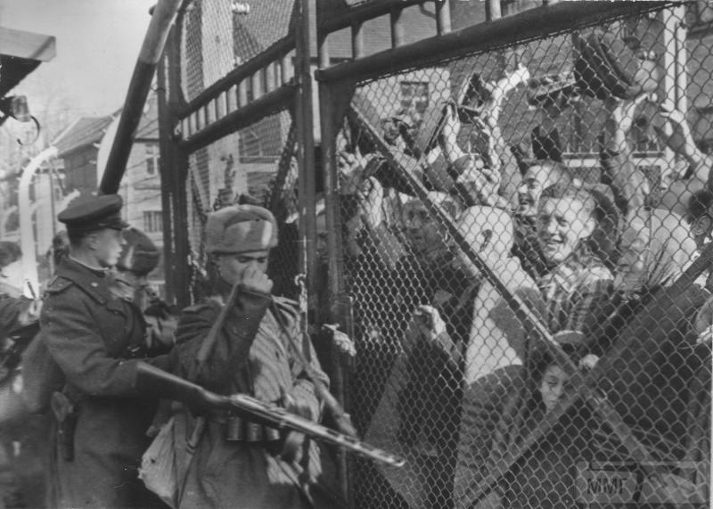 16000 - Военное фото 1941-1945 г.г. Восточный фронт.