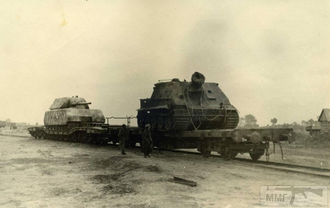 16042 - Военное фото 1941-1945 г.г. Восточный фронт.