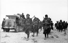 16425 - Военное фото 1941-1945 г.г. Восточный фронт.