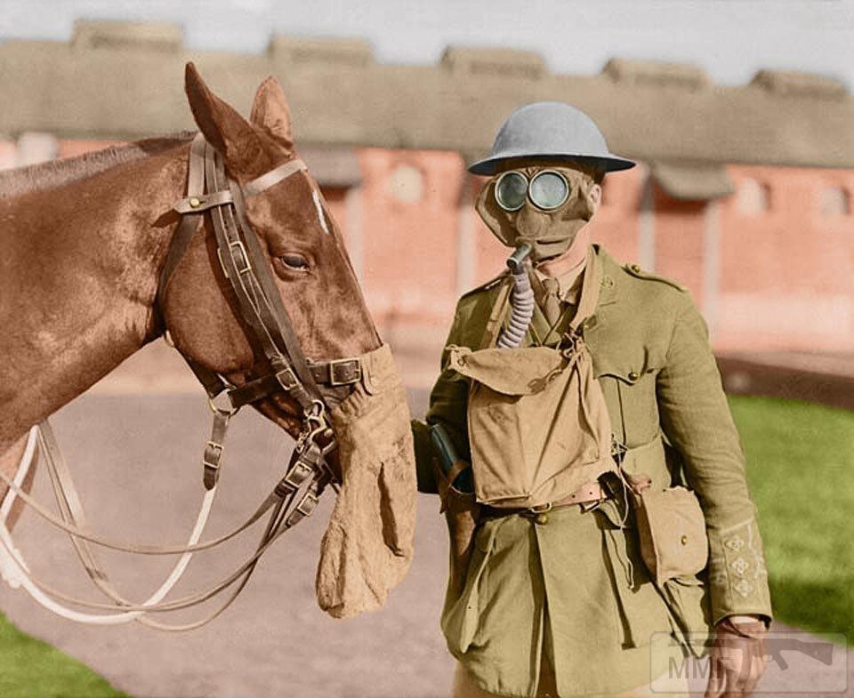 16498 - Военное фото. Западный фронт. 1914-1918г.г.