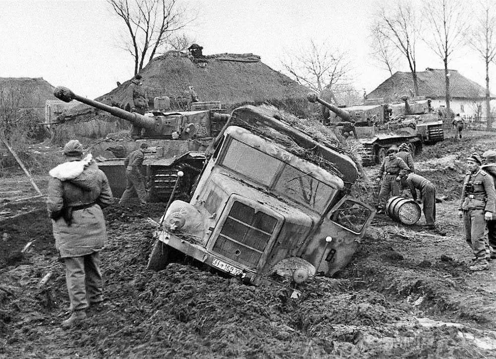 16879 - Военное фото 1941-1945 г.г. Восточный фронт.