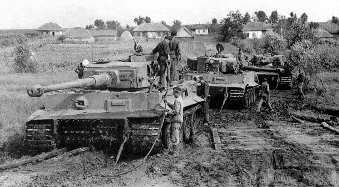 16880 - Военное фото 1941-1945 г.г. Восточный фронт.
