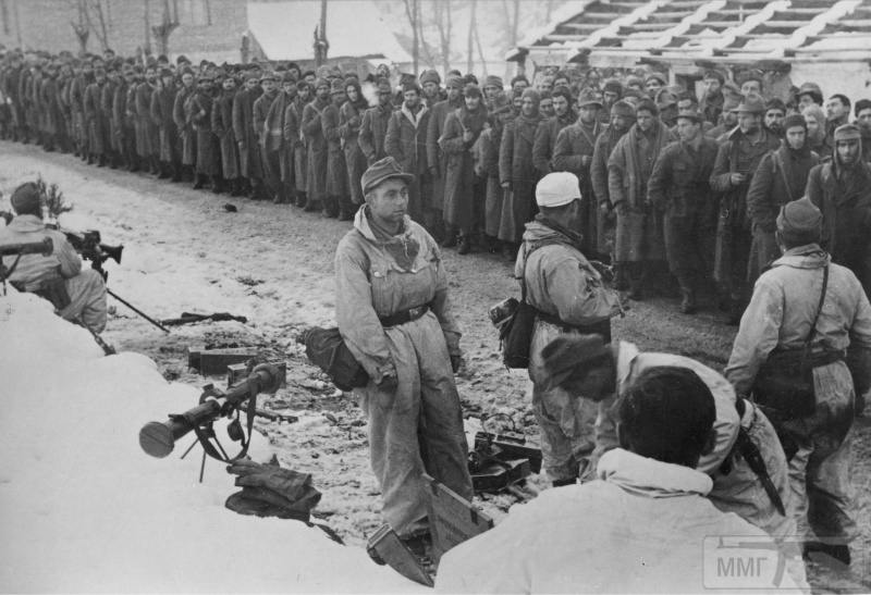 18045 - Союзники Германии на Восточном фронте