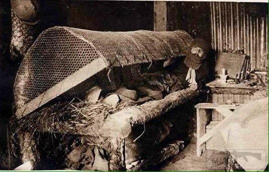 18164 - Военное фото. Западный фронт. 1914-1918г.г.