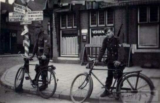 19411 - скрещённые фото