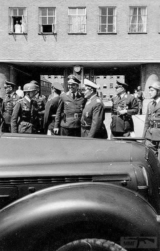 19428 - скрещённые фото