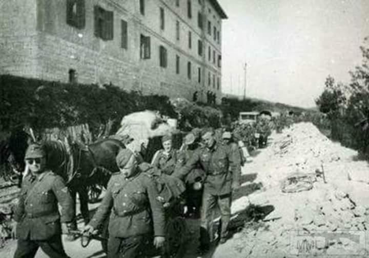 19438 - скрещённые фото