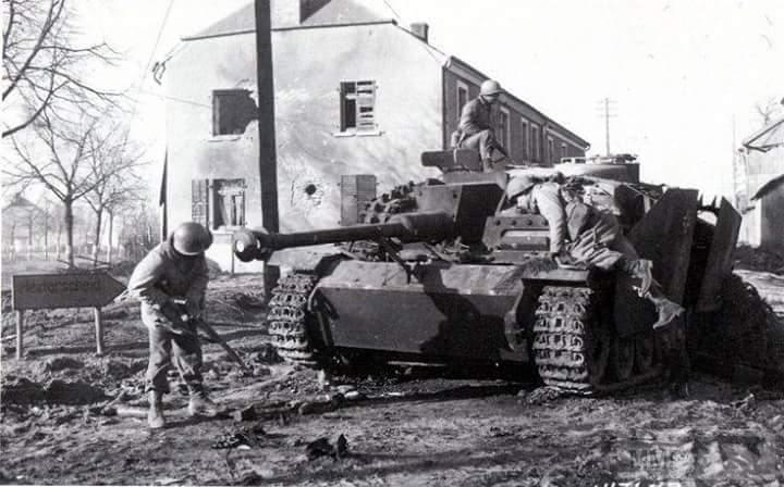 19441 - скрещённые фото