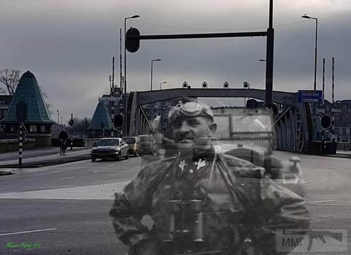 19446 - скрещённые фото