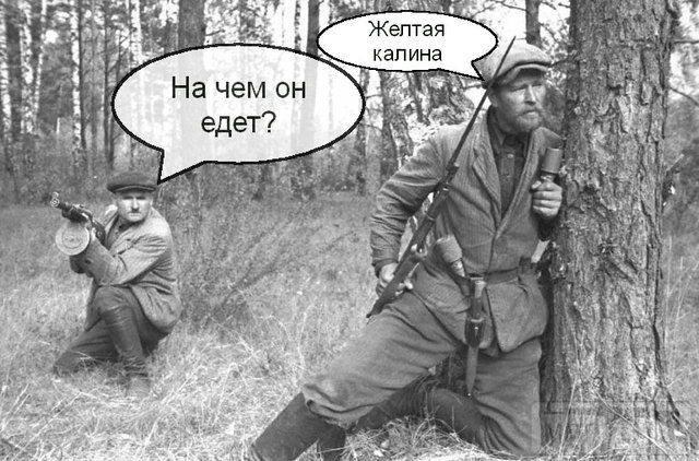 20180 - А в России чудеса!