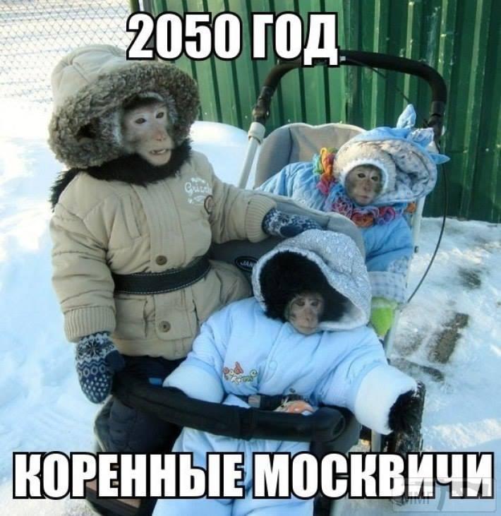 20615 - А в России чудеса!