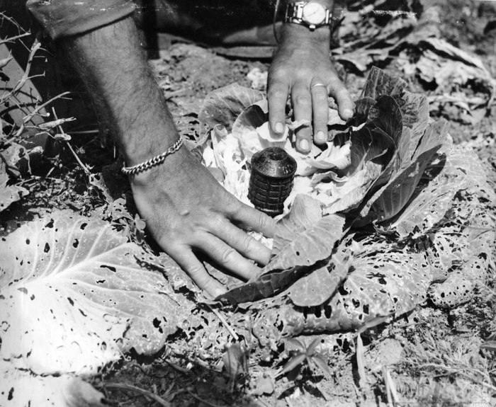 21842 - Военное фото 1941-1945 г.г. Тихий океан.