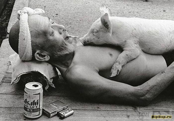 22829 - Пить или не пить? - пятничная алкогольная тема )))