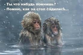 23644 - Пить или не пить? - пятничная алкогольная тема )))