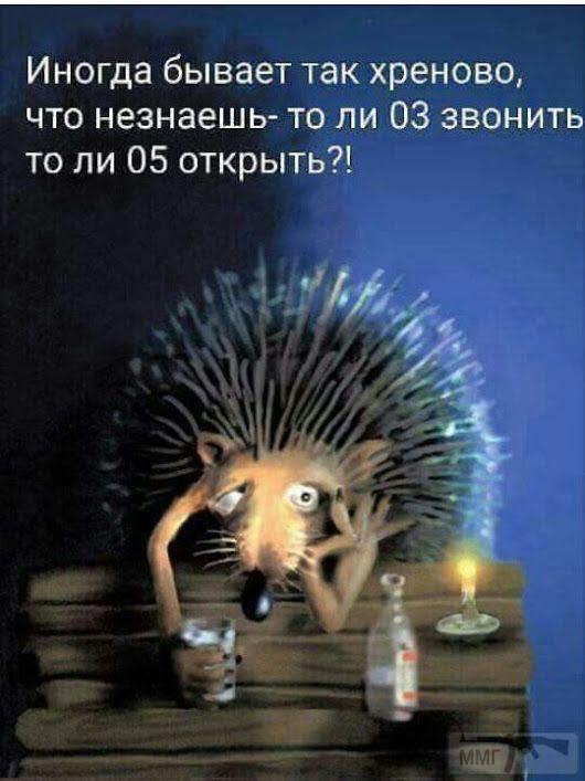 23857 - Пить или не пить? - пятничная алкогольная тема )))