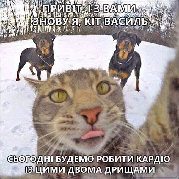24090 - Пить или не пить? - пятничная алкогольная тема )))