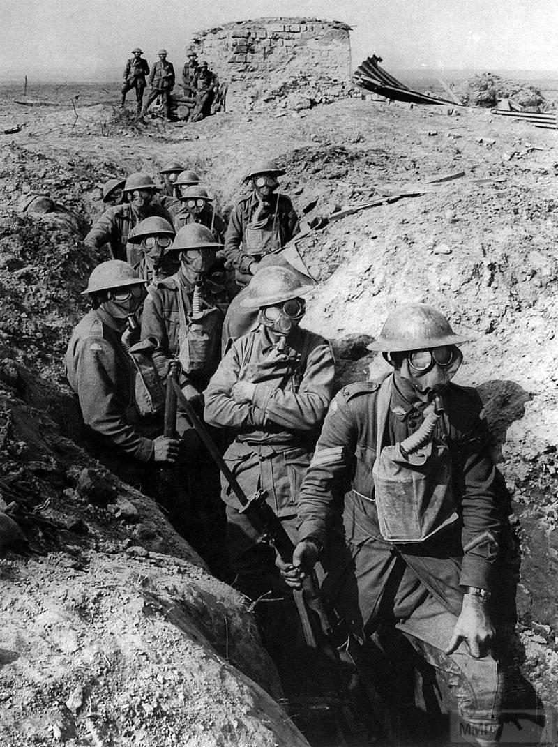 24351 - Военное фото. Западный фронт. 1914-1918г.г.