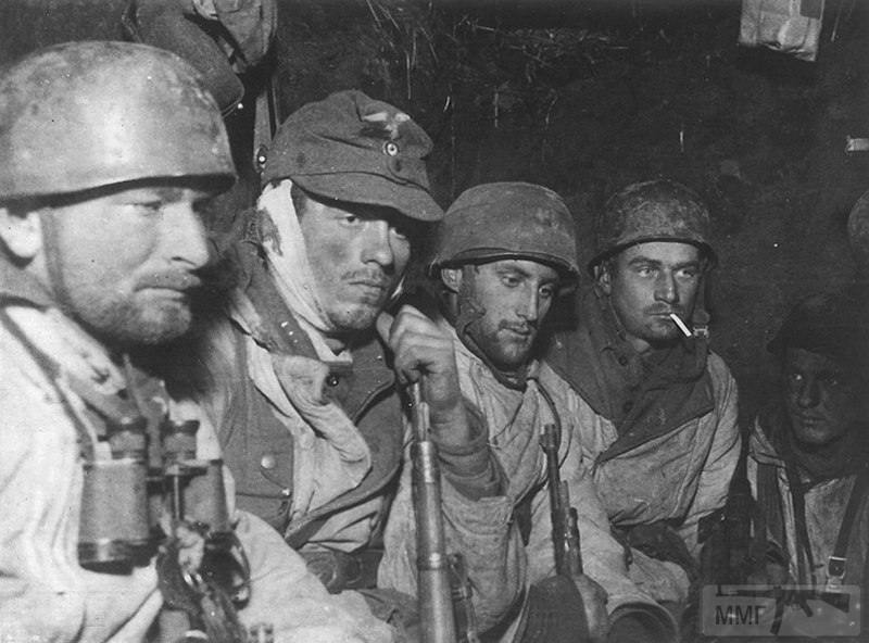 24439 - Военное фото 1941-1945 г.г. Восточный фронт.