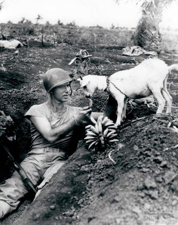 24508 - Военное фото 1941-1945 г.г. Тихий океан.
