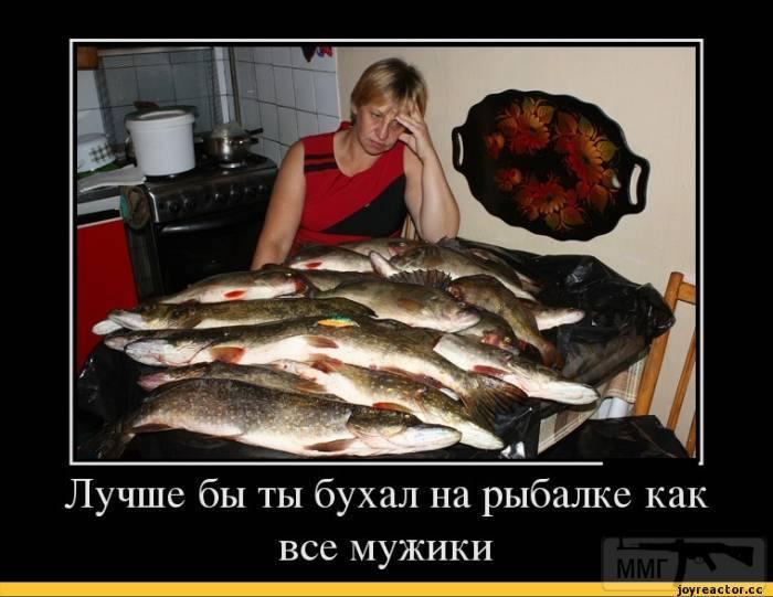 24695 - Пить или не пить? - пятничная алкогольная тема )))