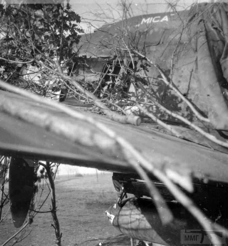 25095 - Союзники Германии на Восточном фронте