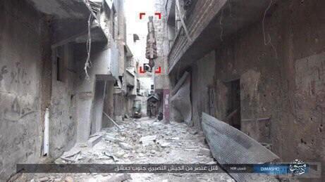 25602 - Сирия и события вокруг нее...