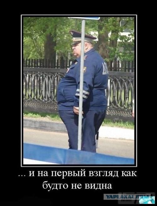 25867 - А в России чудеса!