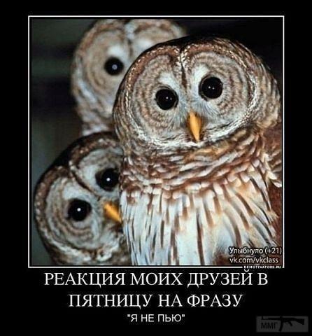 25899 - Пить или не пить? - пятничная алкогольная тема )))