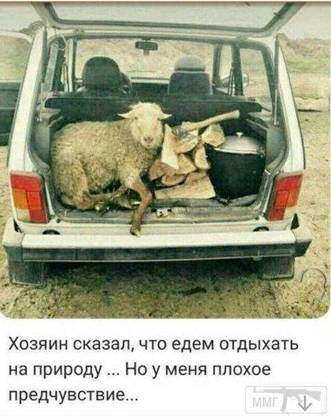 25924 - Пить или не пить? - пятничная алкогольная тема )))
