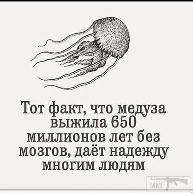 26005 - А в России чудеса!