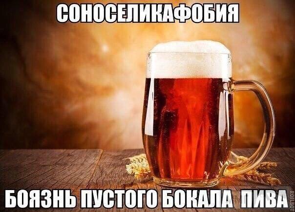 26558 - Пить или не пить? - пятничная алкогольная тема )))