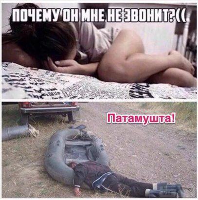 27355 - Пить или не пить? - пятничная алкогольная тема )))