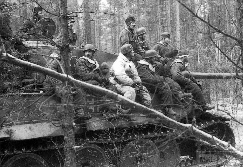 27774 - Военное фото 1941-1945 г.г. Восточный фронт.