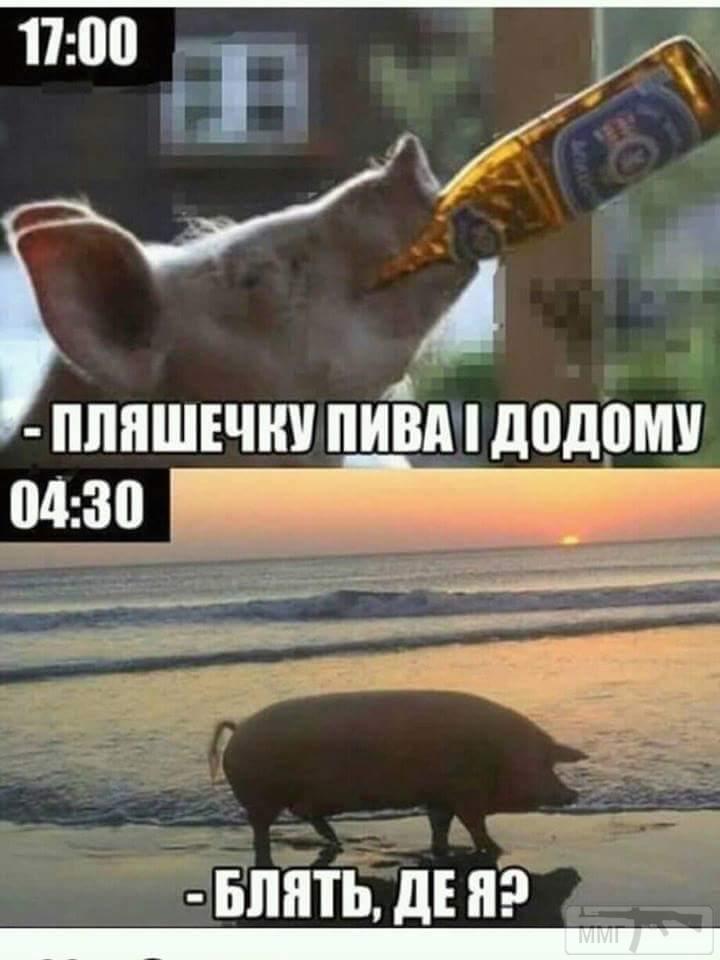 27956 - Пить или не пить? - пятничная алкогольная тема )))