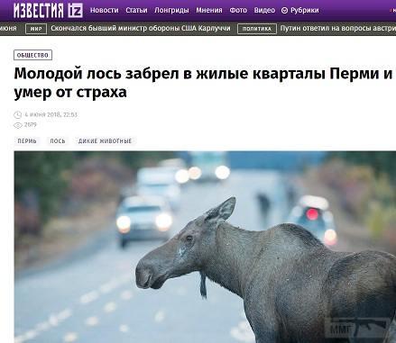 28148 - А в России чудеса!