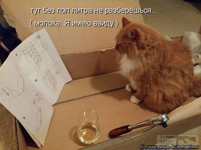 28345 - Пить или не пить? - пятничная алкогольная тема )))