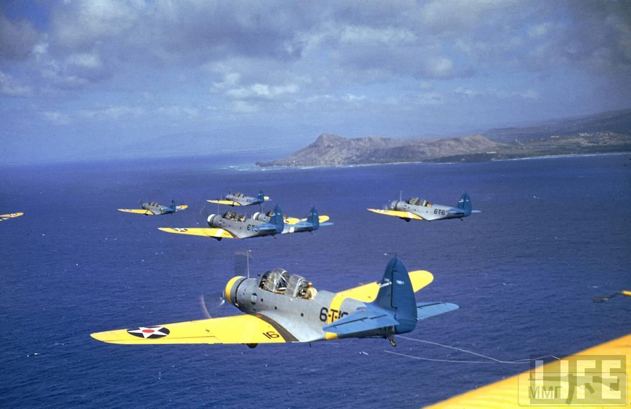 29316 - Война на Тихом океане в цвете