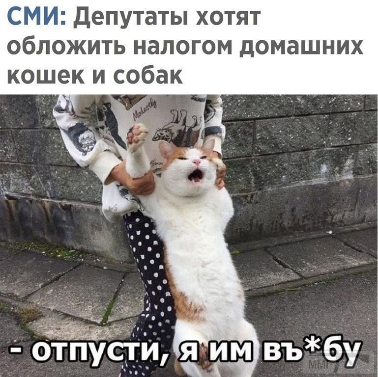 29431 - А в России чудеса!