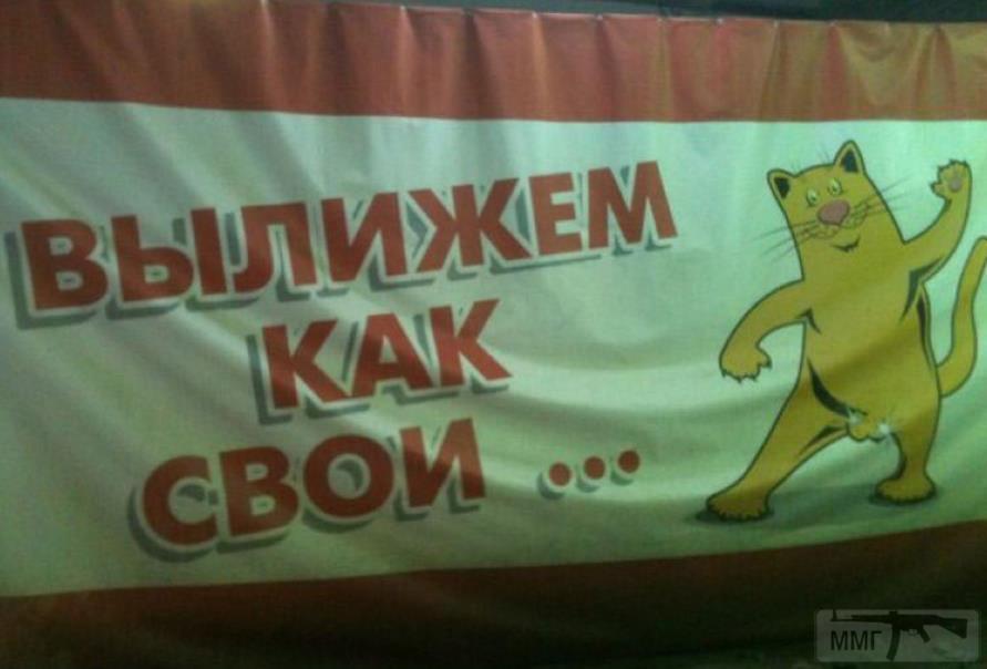 29449 - А в России чудеса!