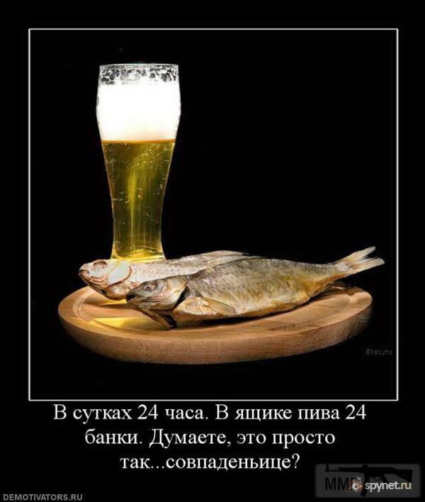 29496 - Пить или не пить? - пятничная алкогольная тема )))