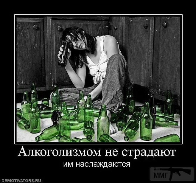 29550 - Пить или не пить? - пятничная алкогольная тема )))