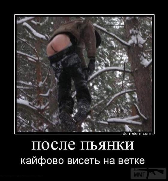 29624 - Пить или не пить? - пятничная алкогольная тема )))