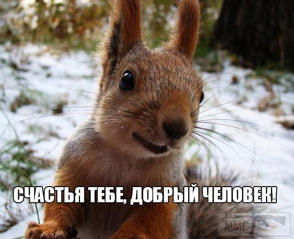 30515 - Пить или не пить? - пятничная алкогольная тема )))