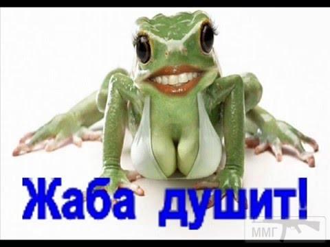 30864 - С Днюхой, Барражер !!!!!!!