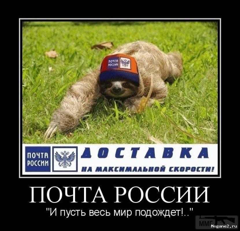 31312 - А в России чудеса!